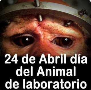 Animales En Argentina Peligro De Extincion