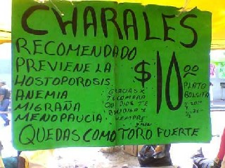 Charales